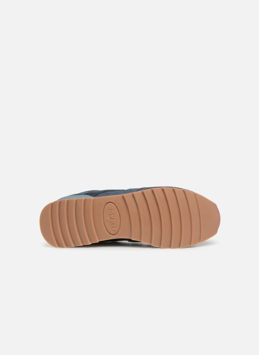 Esprit Astro LU (Azzurro) - scarpe scarpe scarpe da ginnastica chez | Outlet Store Online  17d4ba
