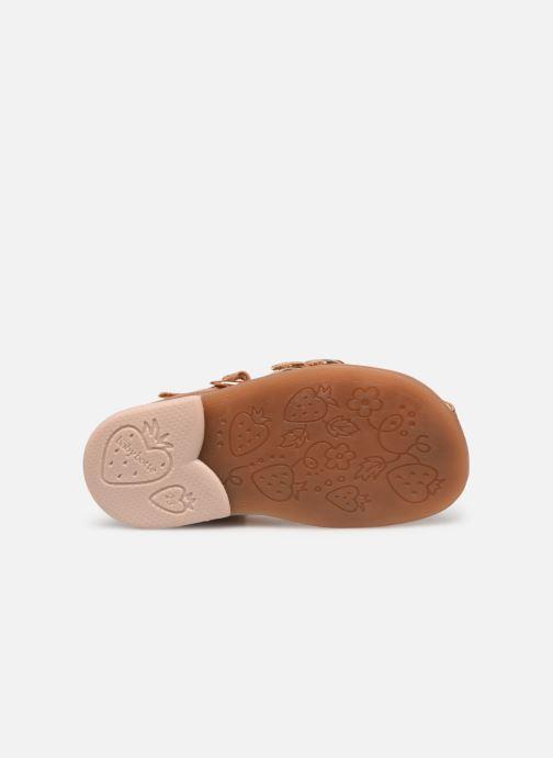 Sandales et nu-pieds Babybotte Twix Marron vue haut