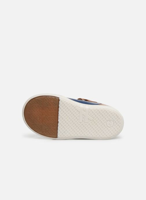 Ballet pumps Babybotte Snow Blue view from above