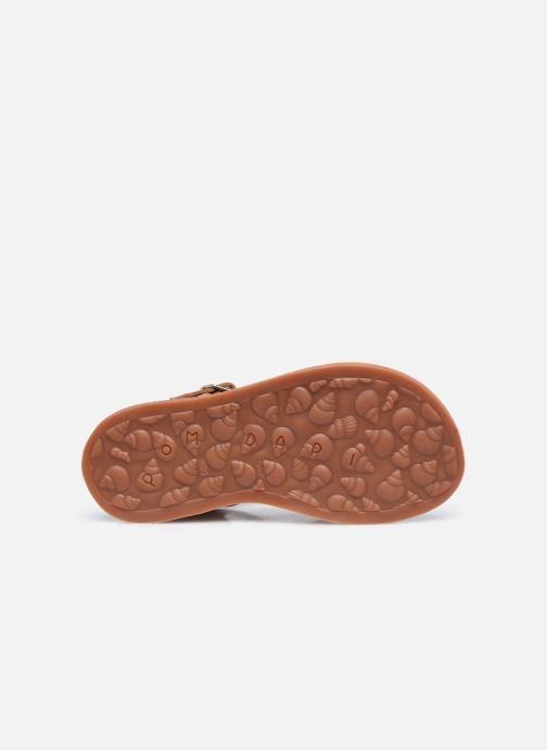Sandali e scarpe aperte Pom d Api Plagette Reverse Marrone immagine dall'alto