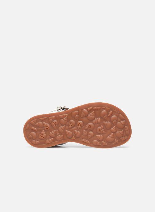 Sandali e scarpe aperte Pom d Api Plagette Reverse Bianco immagine dall'alto