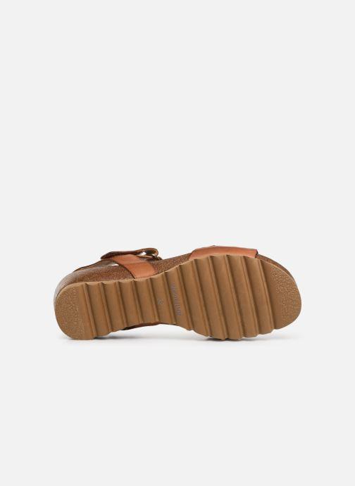 Sandales et nu-pieds Dorking Summer 7847 Marron vue haut