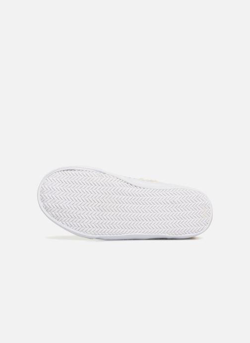 Sneaker Monoprix Kids BASKET FOURREE beige ansicht von oben
