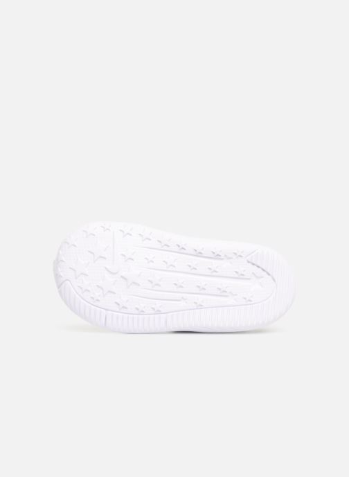 Sneakers Nike Nike Star Runner (Tdv) Nero immagine dall'alto