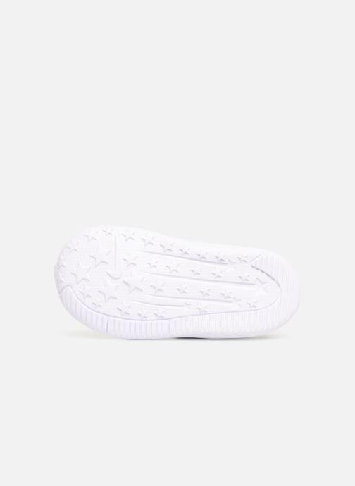 Sneaker Nike Nike Star Runner (Tdv) schwarz ansicht von oben
