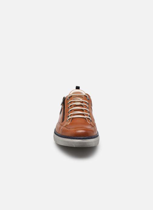 Sneakers Fluchos Quebec 9376 Bruin model