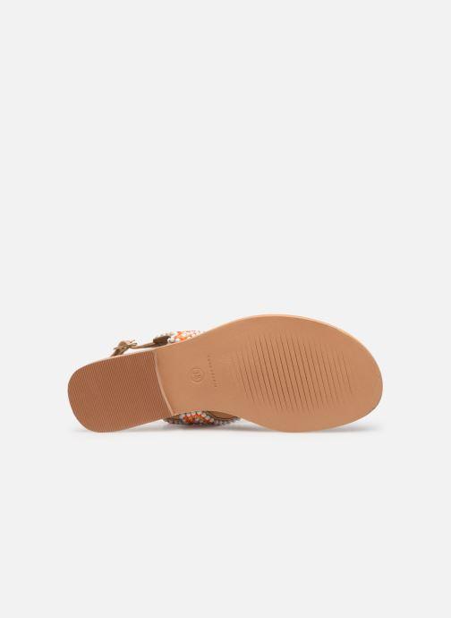 Sandales et nu-pieds COSMOPARIS IJANE Multicolore vue haut