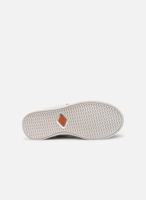 Sneakers P-L-D-M By Palladium Vesco Wit boven