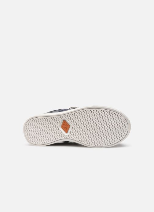 Sneakers P-L-D-M By Palladium Vesco Blauw boven