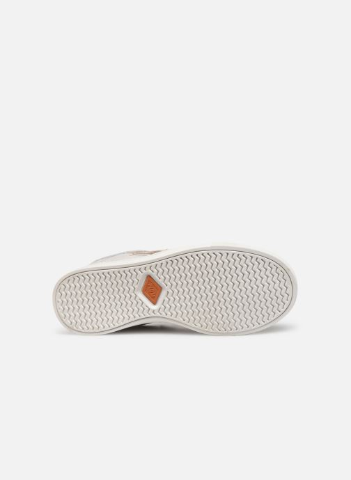 Sneakers P-L-D-M By Palladium Vectible Zilver boven