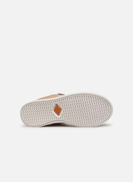 Sneakers P-L-D-M By Palladium Vesco Fl Goud en brons boven