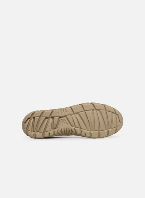 Trainers Caterpillar Rexes Beige view from above