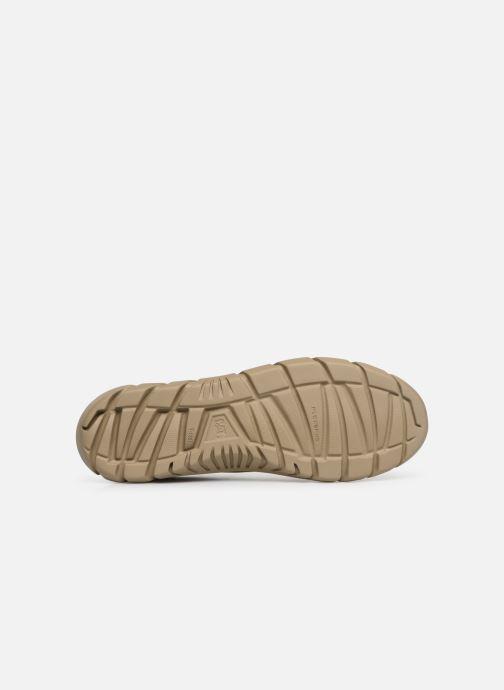 Sneakers Caterpillar Rexes Beige boven