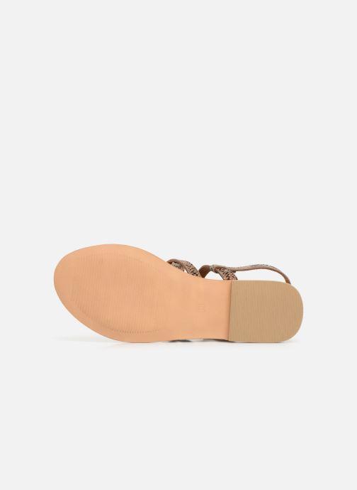 Sandales et nu-pieds Georgia Rose Benilda Marron vue haut