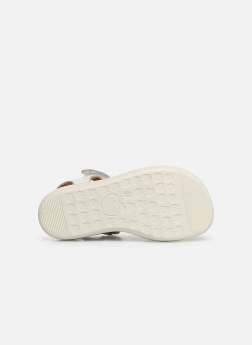 Sandals Shoo Pom Goa Multi White view from above