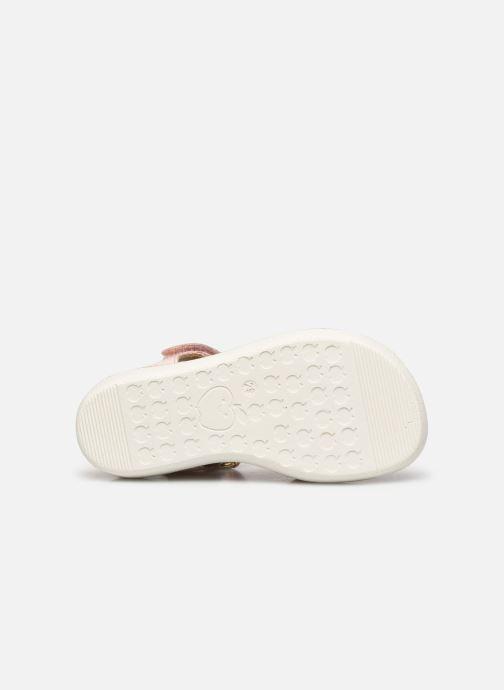 Sandali e scarpe aperte Shoo Pom Goa Multi Rosa immagine dall'alto