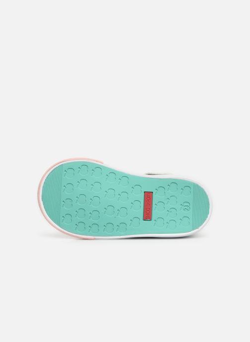 Bottines et boots Shoo Pom Bb Zip Basket Multicolore vue haut