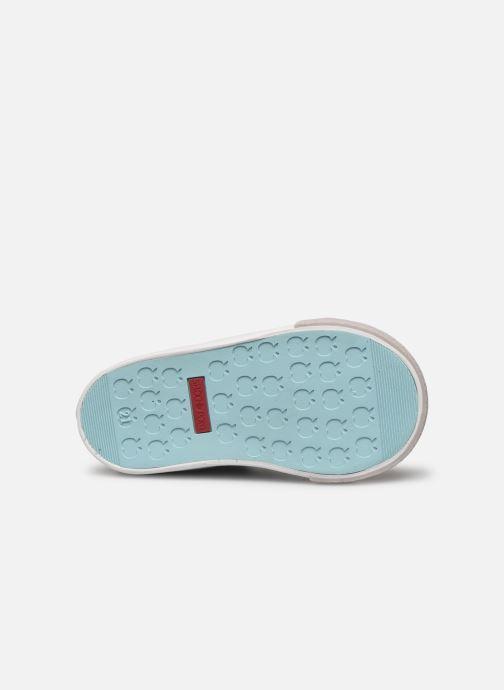 Bottines et boots Shoo Pom Bb Zip Basket Bleu vue haut