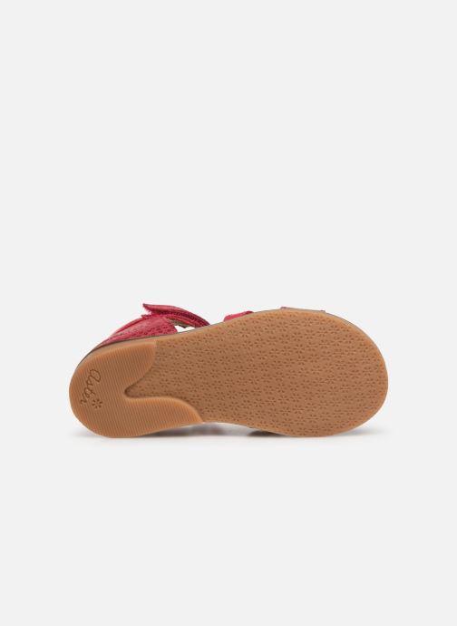Sandales et nu-pieds Aster Nawak Rose vue haut