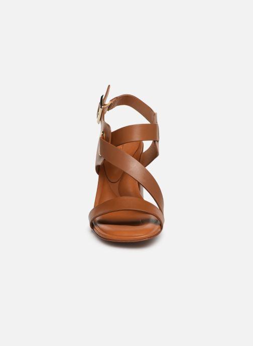 Sandales et nu-pieds Clergerie Alba Marron vue portées chaussures