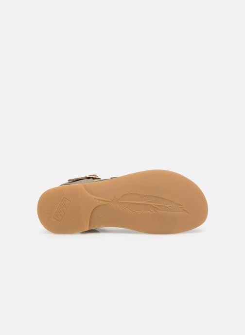 Sandales et nu-pieds Adolie Lazar Feather Argent vue haut