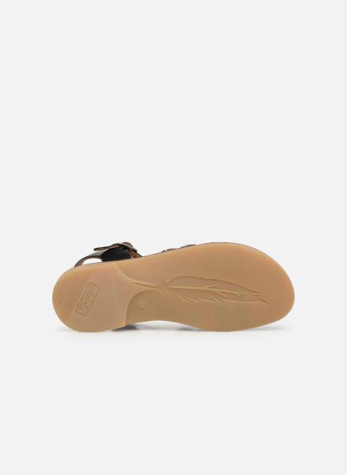 Sandali e scarpe aperte Adolie Lazar Curved Nero immagine dall'alto