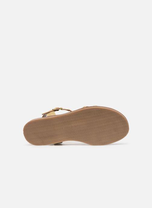 Sandales et nu-pieds L'Atelier Tropézien Alienor Or et bronze vue haut