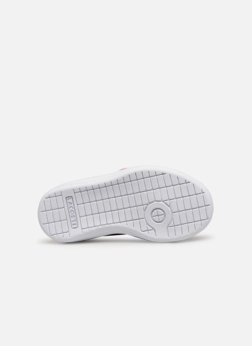 Baskets Lacoste Carnaby Evo 119 6 Inf Rose vue haut