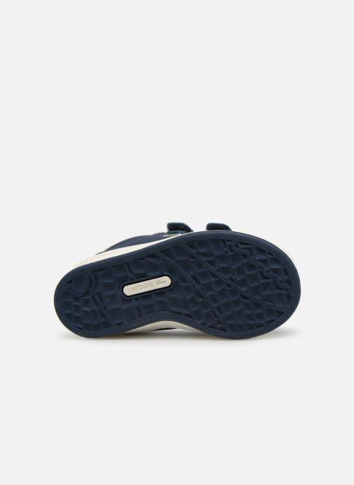 Sneaker Lacoste Masters 119 1 Inf blau ansicht von oben