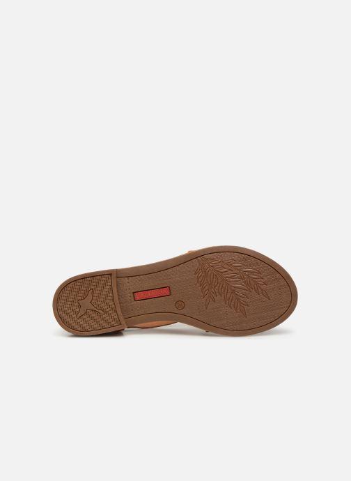 Sandales et nu-pieds Pikolinos Algar W0X-0552 Marron vue haut