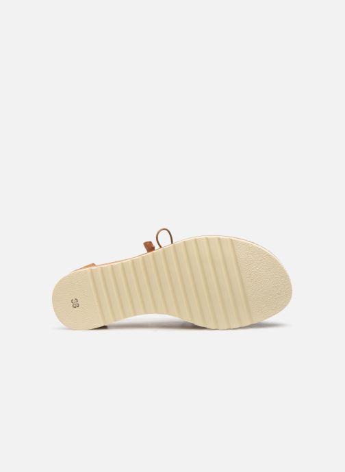 Sandales et nu-pieds Pikolinos Alcudia W1L-0917 Marron vue haut