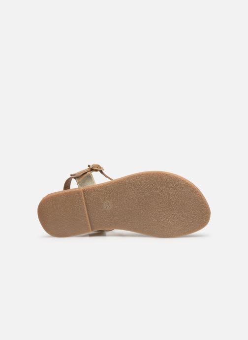 Sandales et nu-pieds Les Tropéziennes par M Belarbi Tony Or et bronze vue haut