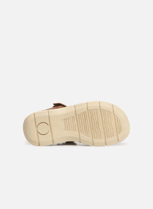 Sandales et nu-pieds Primigi PFP 34215 Marron vue haut