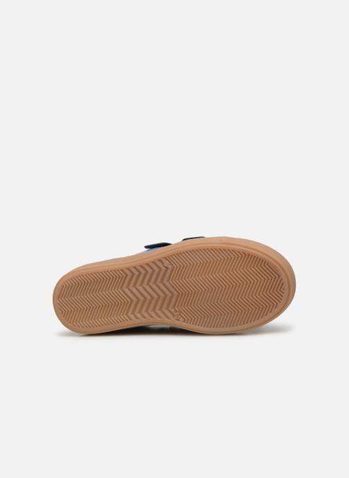 Sneakers Primigi PTM 34239 Blauw boven