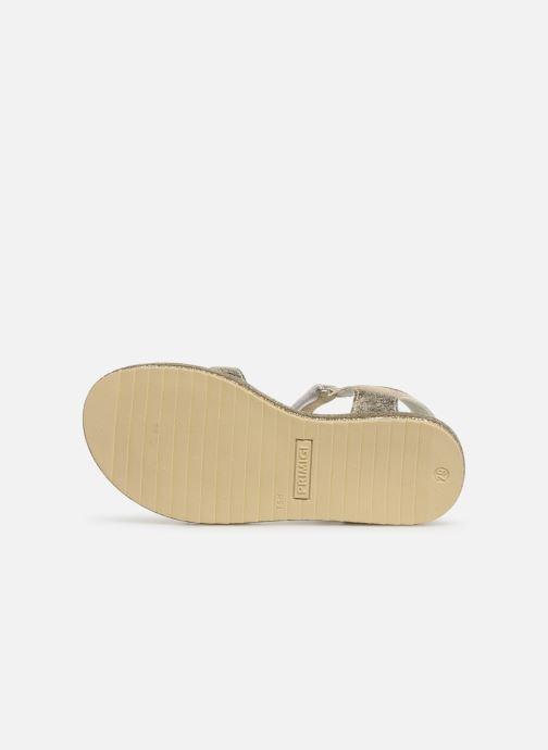 Sandales et nu-pieds Primigi PES 34313 Or et bronze vue haut