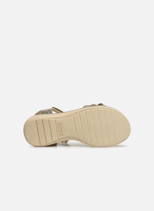 Sandales et nu-pieds Primigi PDI 34357 Or et bronze vue haut
