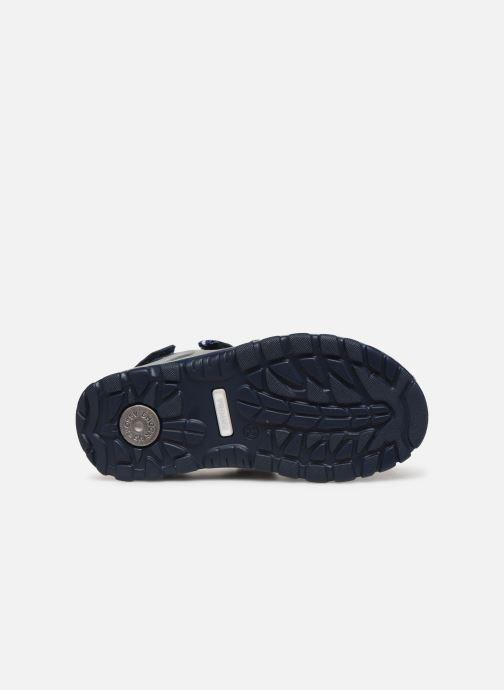 Sandaler Primigi PTU 33977 Blå bild från ovan