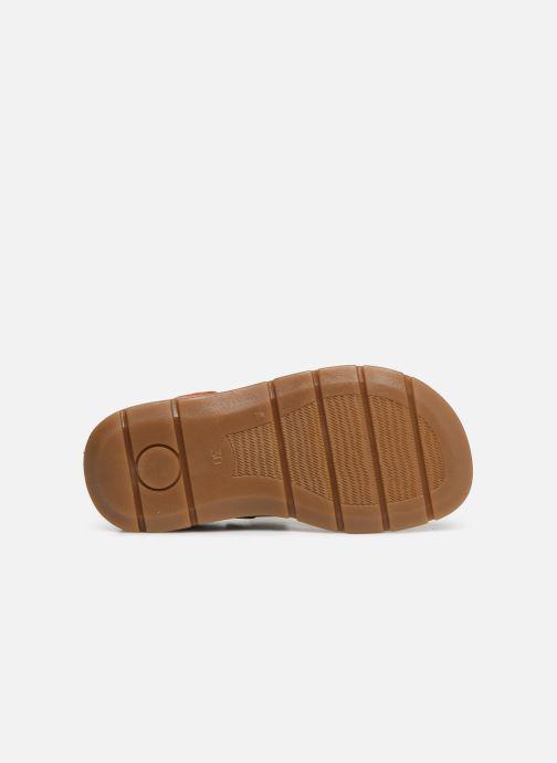 Sandales et nu-pieds Primigi PFP 34217 Marron vue haut