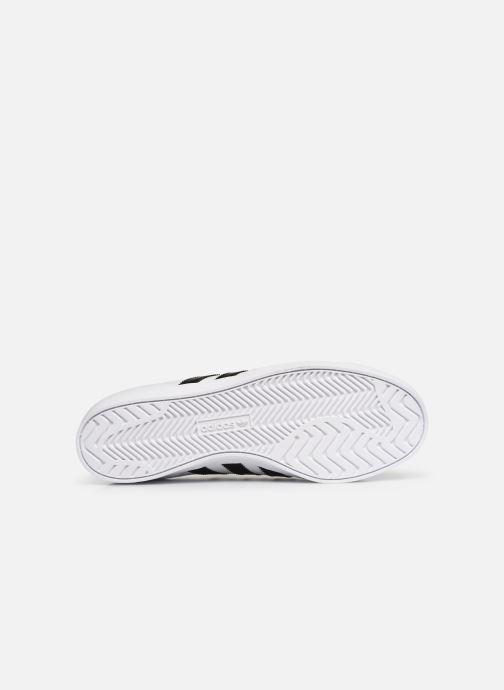 Baskets adidas originals Coast Star Blanc vue haut