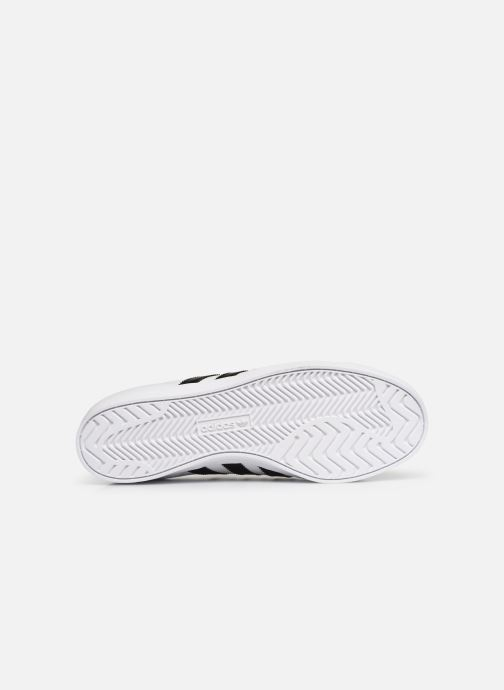 Baskets Adidas Originals Coast Star Blanc vue haut