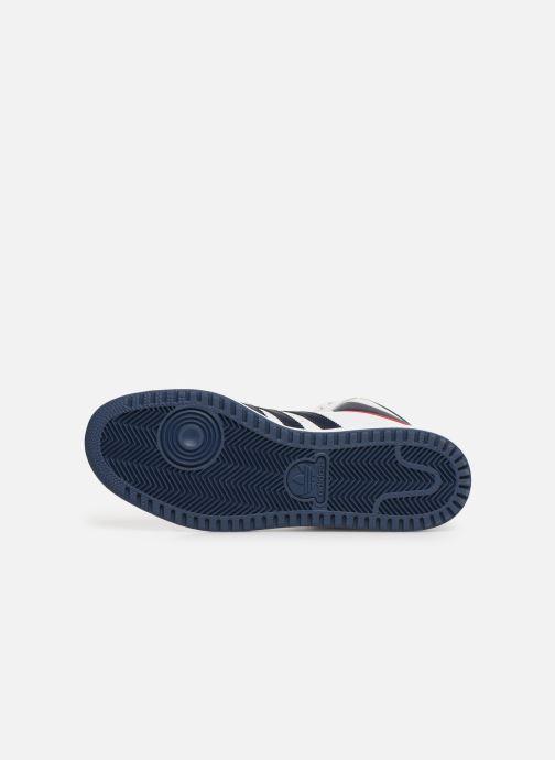 Sneakers adidas originals Top Ten Hi Wit boven