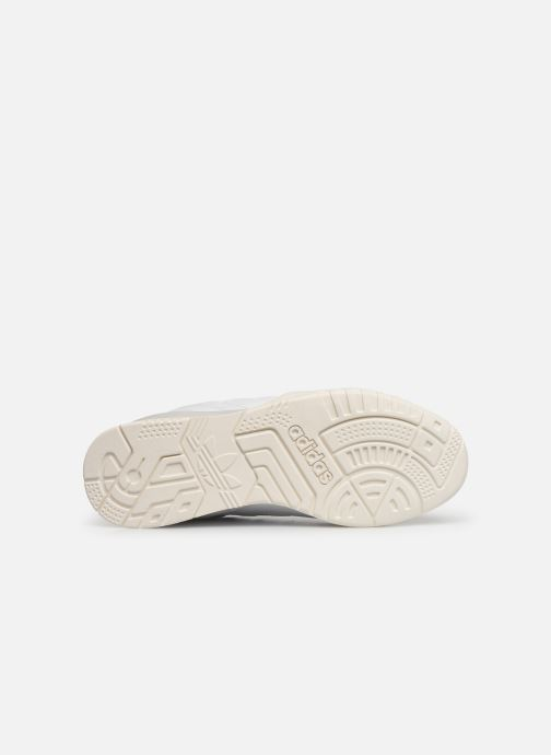 Baskets adidas originals A.R. Trainer W Blanc vue haut