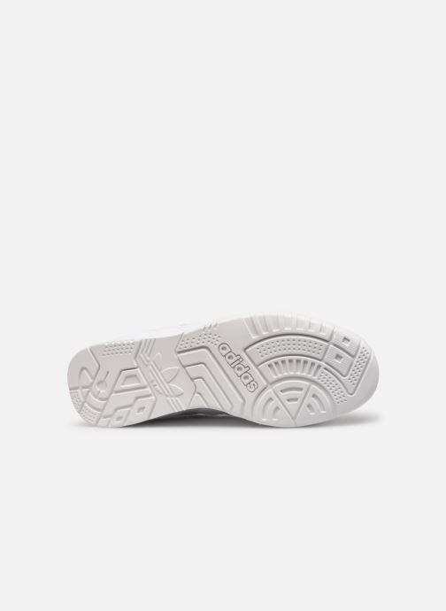Sneaker adidas originals A.R. Trainer W weiß ansicht von oben