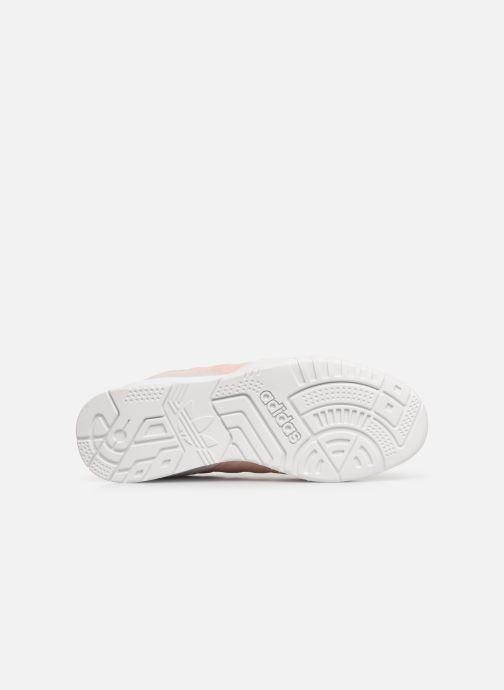 Sneakers adidas originals A.R. Trainer W Rosa immagine dall'alto