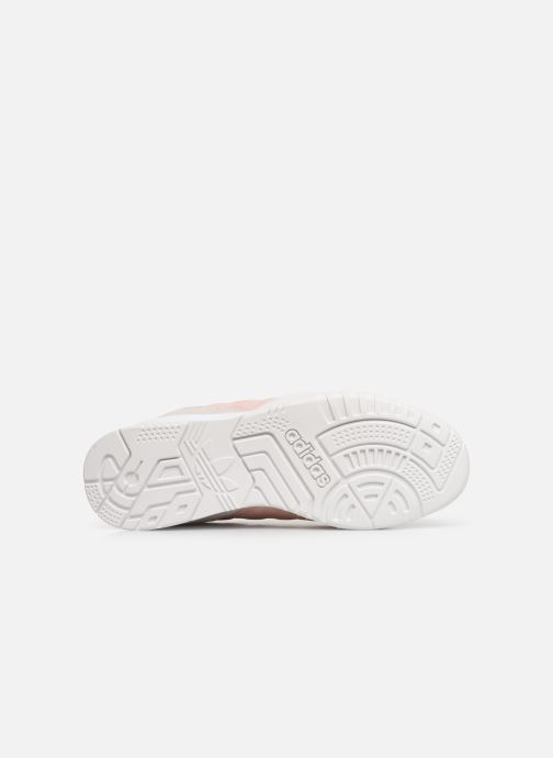 Sneaker adidas originals A.R. Trainer W rosa ansicht von oben