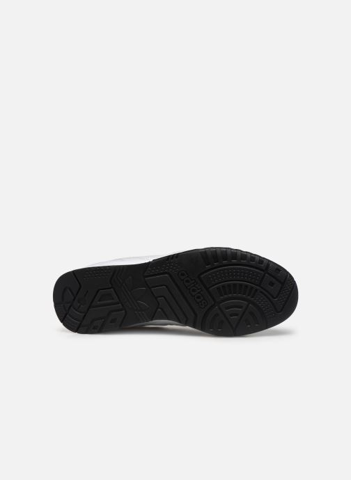 Sneakers adidas originals A.R. Trainer W Bianco immagine dall'alto