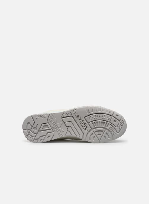 Trainers adidas originals A.R. Trainer W White view from above