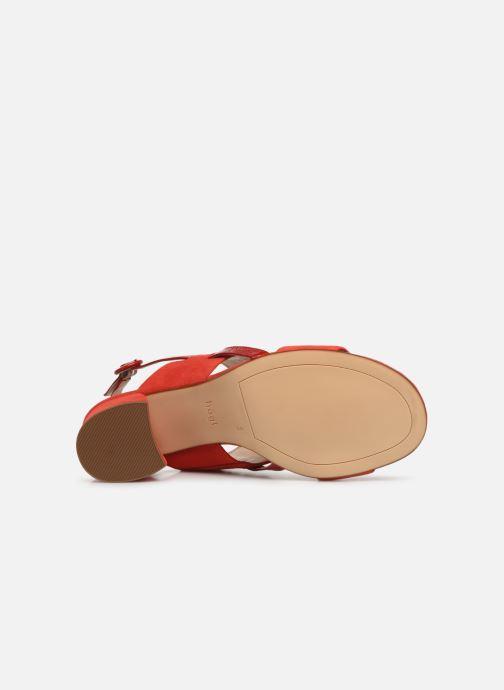 Sandales et nu-pieds HÖGL Painty Rouge vue haut