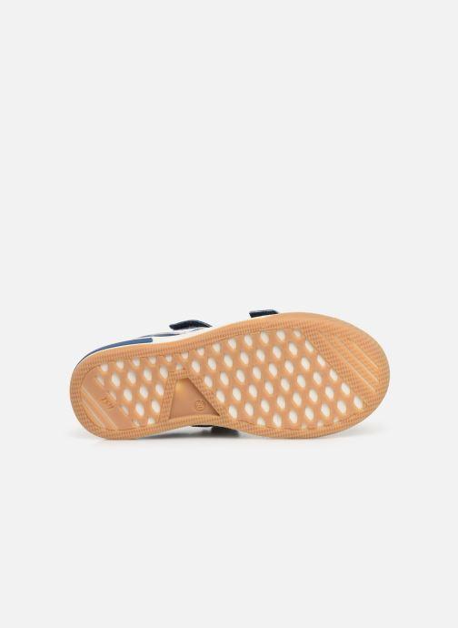 Sneakers Bopy Vito Azzurro immagine dall'alto