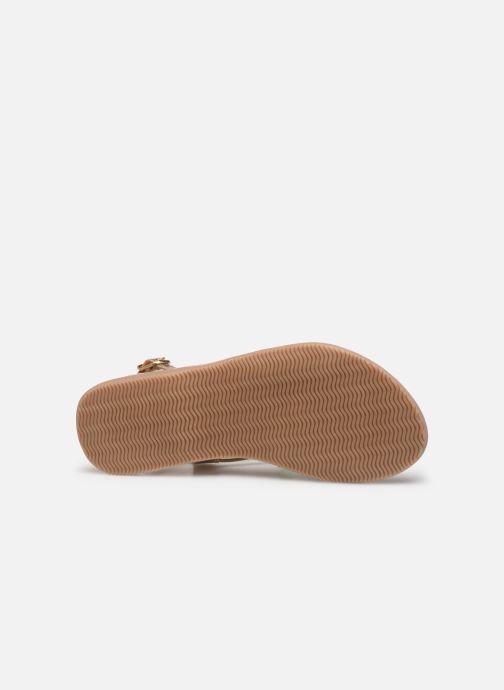 Sandales et nu-pieds Bopy Fabrille Lilybellule Multicolore vue haut